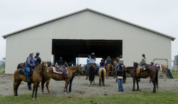 Triple C Pleasure Horses Boarding and Lessons